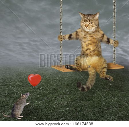 The handsome cat rides on a swing. A rat is staring at him and holding a red balloon.