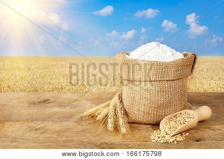 wheat flour in sack. Ears of wheat and flour in bag on table on field background. Agriculture and harvest concept. Ripe wheat field, blue sky, sunshine. Photo with copy space area for a text