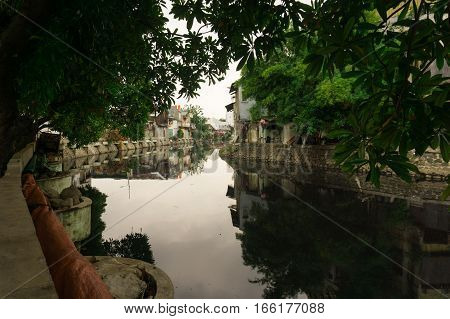 Dirty river surrounding with bushes and slums photo taken in Jakarta Indonesia java
