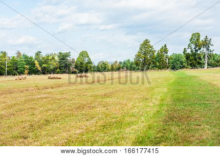 Hay roll bales on countryside field with power telephone lines
