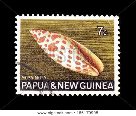 PAPUA NEW GUINEA - CIRCA 1969 : Cancelled postage stamp printed by Papua New Guinea, that shows Giant Mitre.