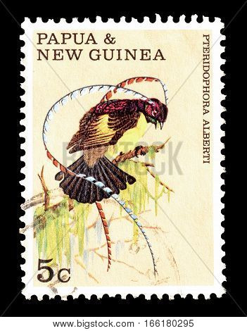 PAPUA NEW GUINEA - CIRCA 1970 : Cancelled postage stamp printed by Papua New Guinea, that shows Bird of Paradise.