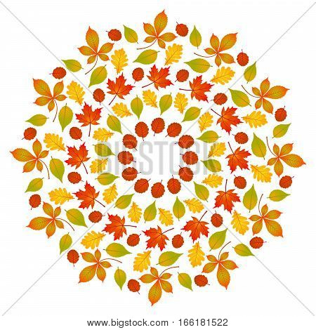 vector colored round autumn leafy mandala - adult coloring book page