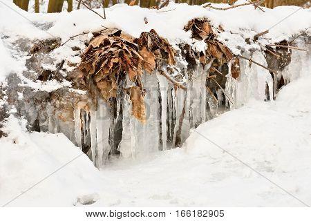 frozen creek. Beautiful winter seasonal background in nature.
