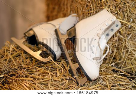 Old figure skates on hay background. Winter holidays concept. Vintage white ice skating shoes and blades