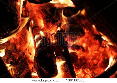 Closeup log fire heat fireplace. Burning flame. Barbecue coal blazing