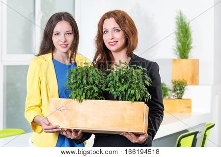 Green living. Two attractive young businesswomen holding a box with plants istanding in modern office. Environmental scientists or biologists at work. Students in biology and ecology. Eco concept