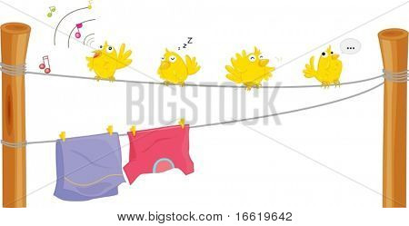 illustration of four birds on a clothes line