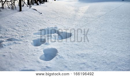 Textured surface of the snow-covered field. Human footprints on the ice crust. Winter high contrast background.