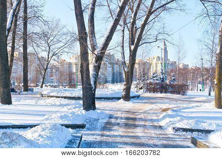Snow-covered alley in the park Starostinskaya Sloboda in the center of city Minsk