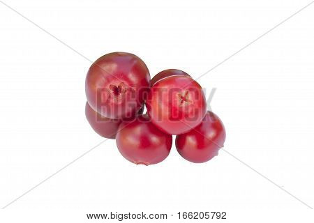 Cowberries - cranberries without leaves on the white background isolated