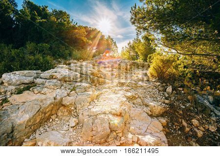 Sunrise over beautiful nature of Calanques on the azure coast of France. High bright cliffs in sunlight under blue sunny sky. Sunset over rocky path, way
