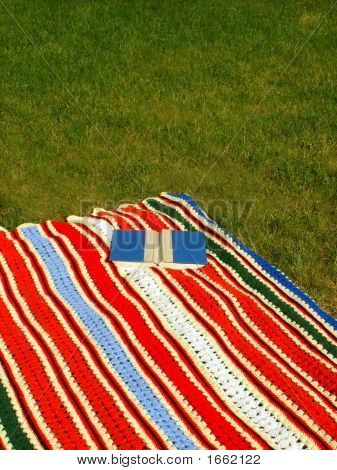 Afghan With Book On Grass.