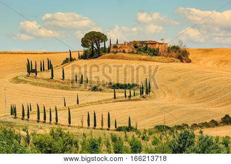 View Of House With Cypress Trees In A Field In The Tuscan Region Siena, Italy
