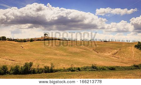 View Of A Empty Plowed Fields In The Tuscan Region San Quirico D Orcia In Italy