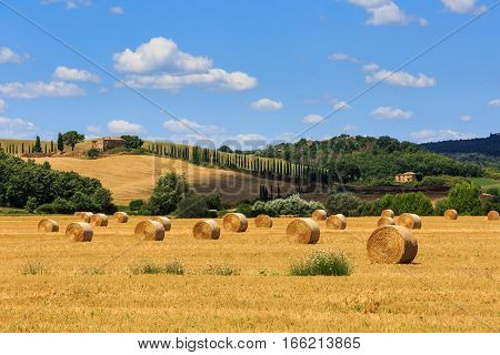 View Of Fields With Hay Bales In The Tuscan Region Siena In Italy