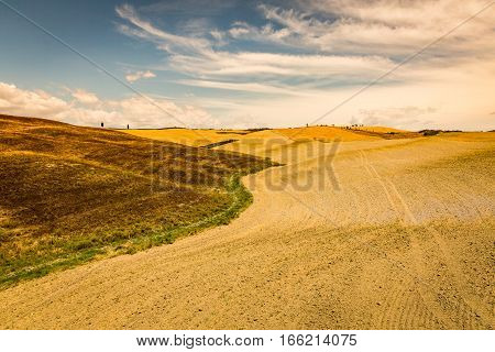 SAN QUIRICO D ORCIA ITALY - JULY 16 2016: View of a farm fields in the tuscan region San Quirico d Orcia in Italy on July 16 2016. This region is popular for tuscan style photographic motives. poster