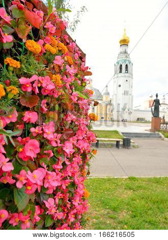 Flowerbed with pink flowers. In the background is the bell tower of the Vologda Kremlin.