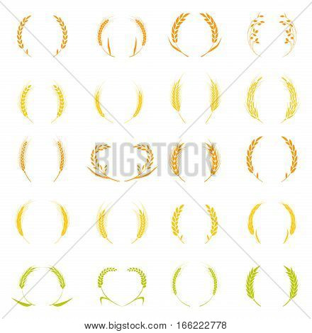 Gold laurel wreath - a symbol of the winner. Wheat ears or rice icons set. Agricultural symbols isolated on white background. Design elements for bread packaging or beer label. Vector illustration.