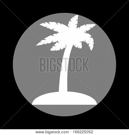 Coconut palm tree sign. White icon in gray circle at black background. Circumscribed circle. Circumcircle.