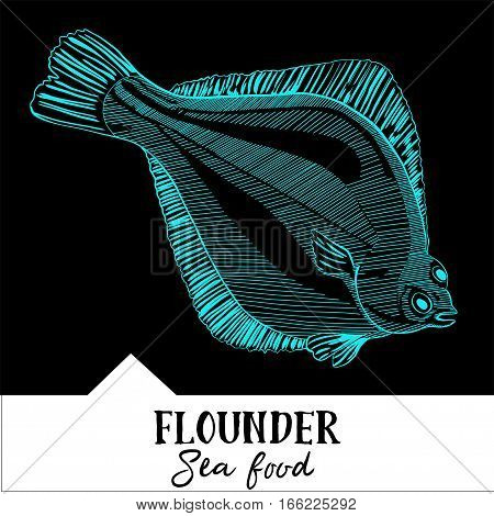 Hand drawn, vector illustration, design for a seafood restaurant menu. The picture shows the flounder on a black background.