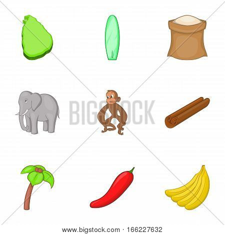 Sri Lanka country symbols icons set. Cartoon illustration of 9 Sri Lanka vector icons for web