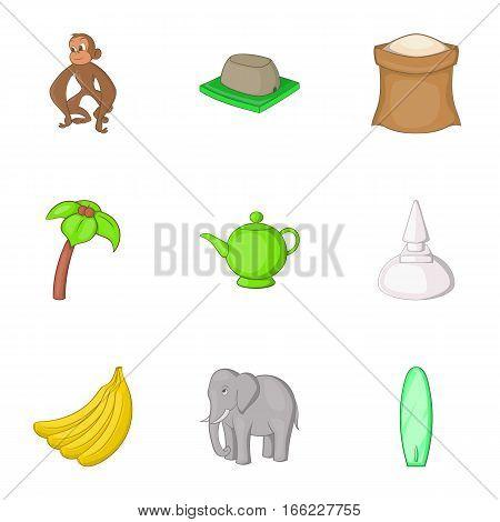 Travel to Sri Lanka icons set. Cartoon illustration of 9 travel to Sri Lanka vector icons for web