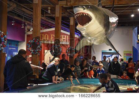 NORWALK, CT - DEC 31: Maritime Aquarium in Norwalk, Connecticut, as seen on Dec 31, 2016. The