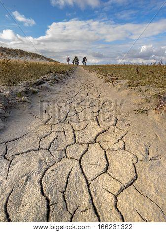 Mudrcracks On Coastal Plain