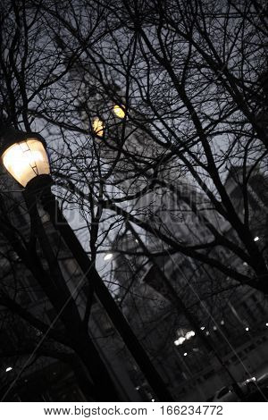 Romantic Night Streetlight