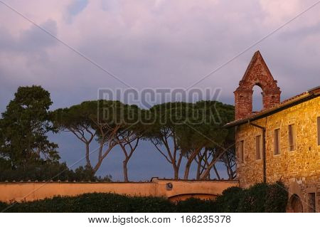 Italy Florence - November 01 2016: view of the fragment of the San Miniato al Monte Church with umbrella pines at dusk on November 01 2016 in Florence Italy.