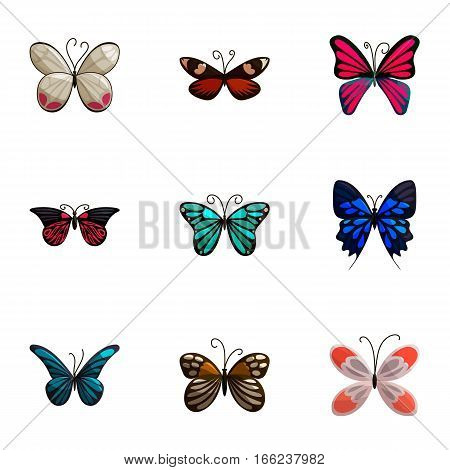 Beautiful butterflies with open wings icons set. Cartoon illustration of 9 beautiful butterflies with open wings vector icons for web