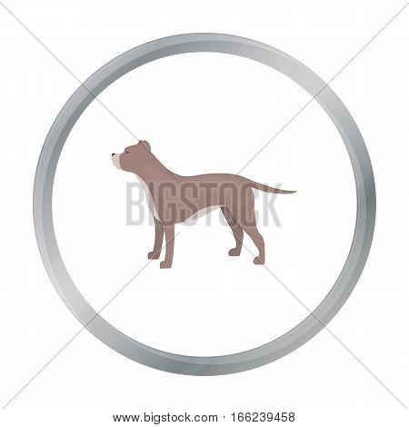 Pitbull vector illustration icon in cartoon design - stock vector