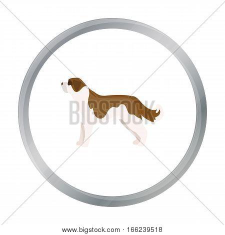St. Bernard dog vector illustration icon in cartoon design - stock vector