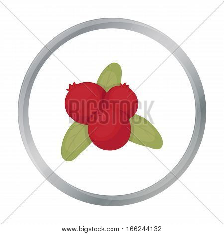 Cranberry icon in cartoon style isolated on white background. Canadian Thanksgiving Day symbol vector illustration. - stock vector