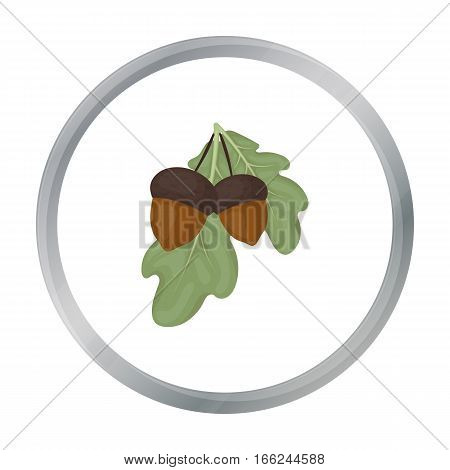 Acorns icon in cartoon style isolated on white background. Canadian Thanksgiving Day symbol vector illustration. - stock vector