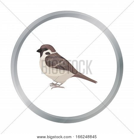 Sparrow icon in cartoon style isolated on white background. Bird symbol vector illustration. - stock vector