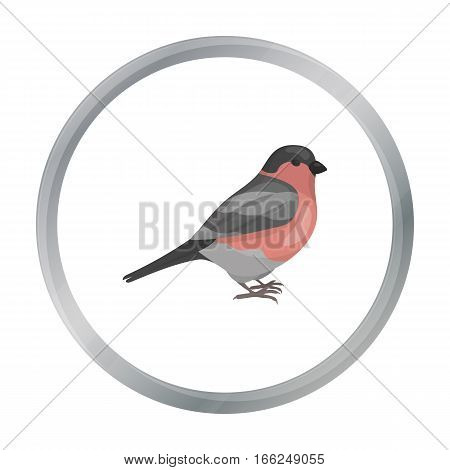 Bullfinch icon in cartoon style isolated on white background. Bird symbol vector illustration. - stock vector
