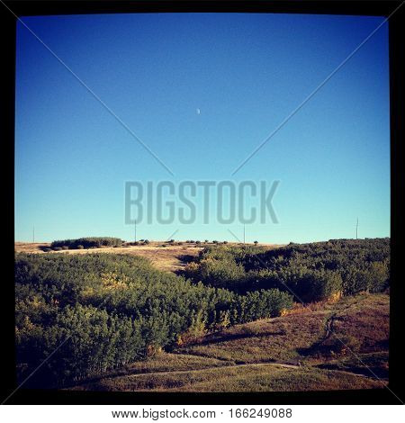 Scenic autumn meadow landscape with walking trails.Thick trees on hills isolated shrubs and poles on hilltop. Clear bright blue sky with moon in view. Instagram effects