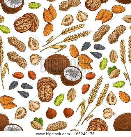 Nuts pattern. Grain, cereal and seeds of coconut, almond, pistachio and cashew, hazelnut, walnut, bean pod with peanut, sunflower and pumpkin seeds, wheat and rye. Vector seamless background