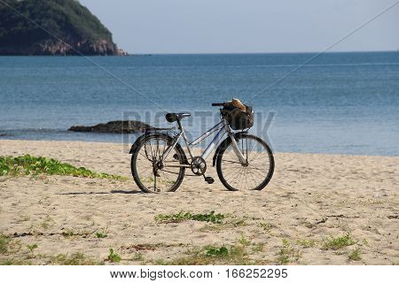 Bicycles parked on a sandy beach shore.