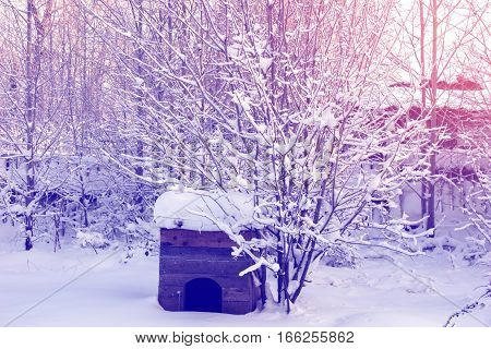 Suburban Area In Winter, Covered With Snow Kennel