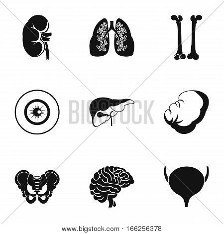Internal organs icons set. Simple illustration of 9 internal organs vector icons for web