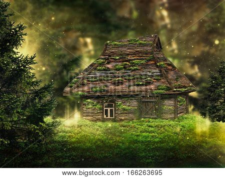 magical old house in the fairy forest