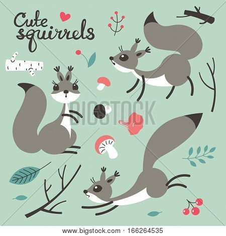 Cartoon cute squirrel. Little funny squirrels. Vector illustration grouped and layered for easy editing
