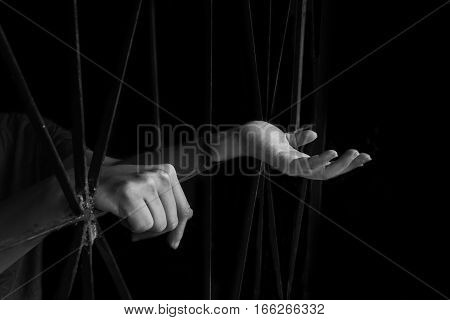 hand of woman holding cage abuse human trafficking concept with black shadow in white tone