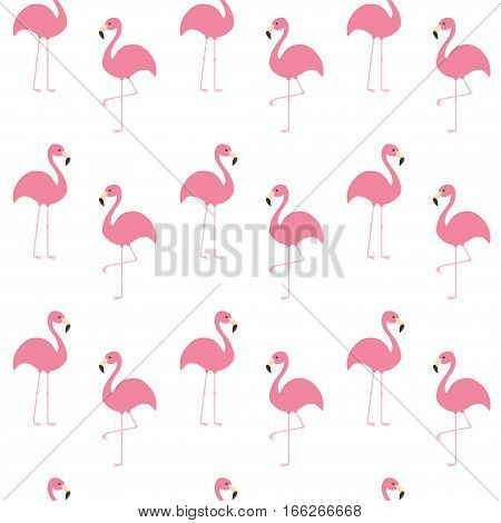 Flamingo set. Seamless Pattern Exotic tropical bird. Zoo animal collection. Cute cartoon character. Decoration element. White background. Isolated. Flat design. Vector illustration