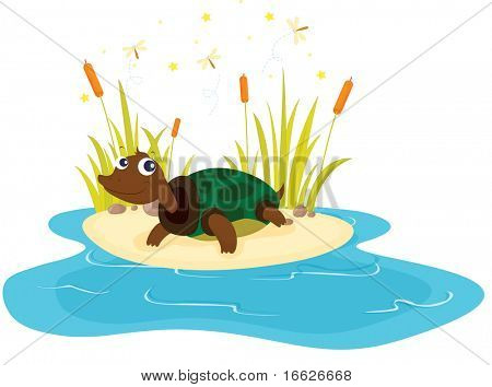 turtle and pond  (vector illustration also available in portfolio)