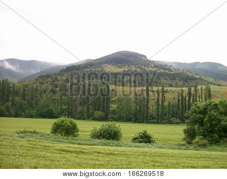 Landscape on the road towards santiago de compostela from Larrasoana to Pampelune
