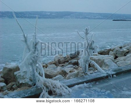 nature ice formations on the beach  in winter